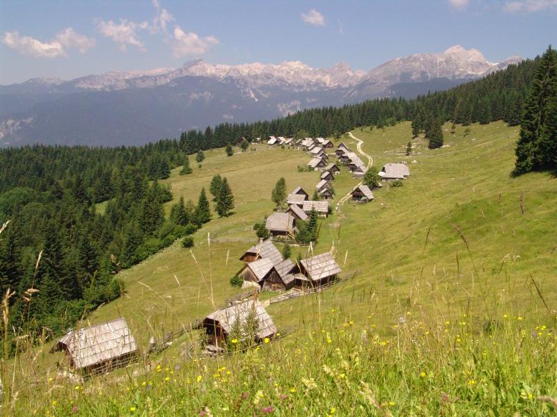 Bogastvo gozdov ter čudovite planine in gore (planina Zajamniki, v ozadju Julijske Alpe in Triglav).
