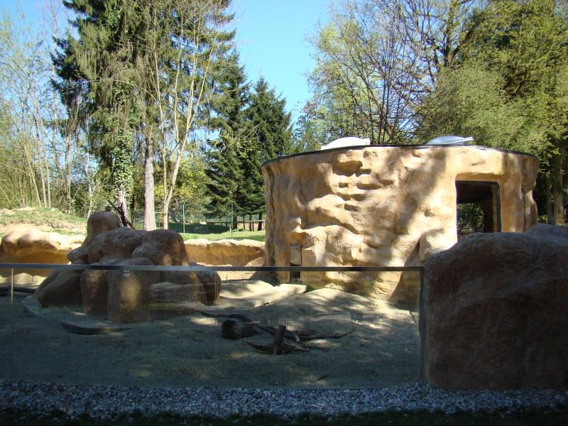Pozimi so surikate notri, čez leto pa večino časa preživijo zunaj.