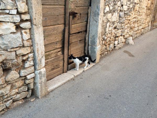Reportaža Barbariga - ulica Vodnjana