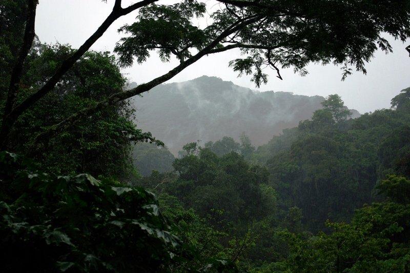 Uganda - Bwindi narodni park
