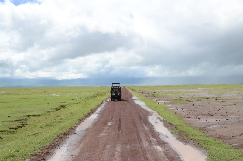 Tanzanija - Ngorongoro