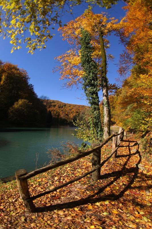 Slavonija - gozdni park Jankovac, grofova poučna steza