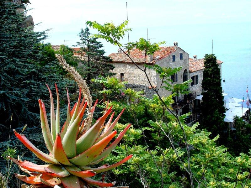 Provansa in Azurna obala