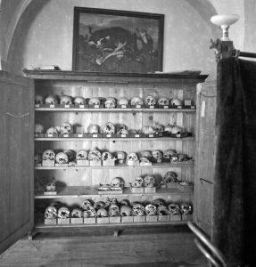 »Okostnjaki v omari« na ptujskem gradu leta 1946. Dve hrvaški študentki pri antropološkem delu. Temeljni namen izkopavanj leta 1946 je bil dokazati napačnost nemških in madžarskih teženj po tem prostoru. Glavna metoda razpoznavanja etničnosti je bila še vedno fizična antropologija.